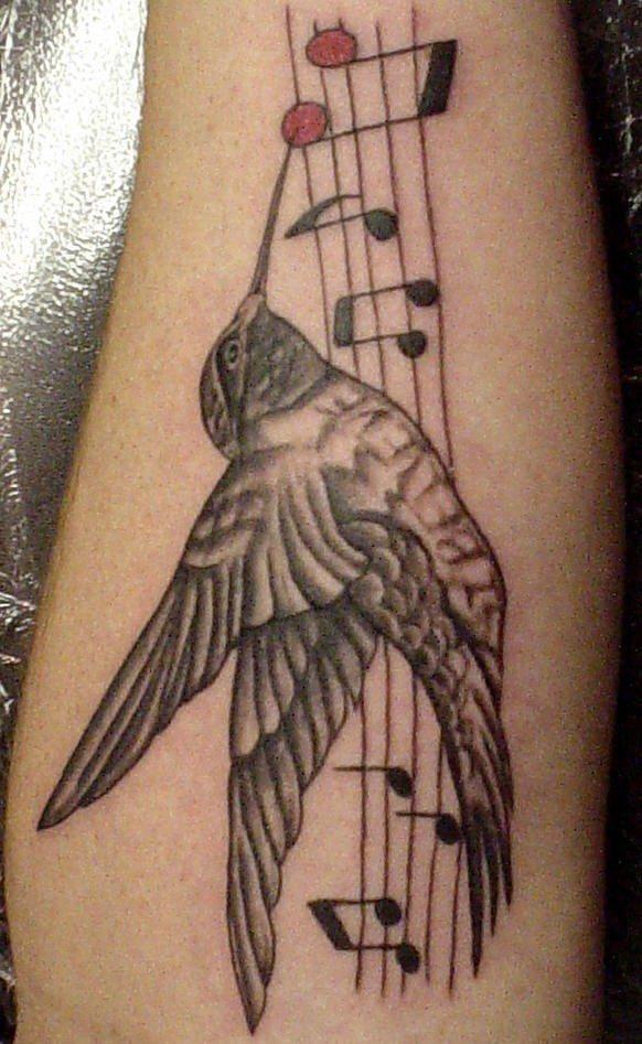 Hummingbird on musical notes tattoo