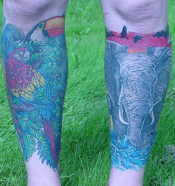 Leg tattoo, big elephant and pelican