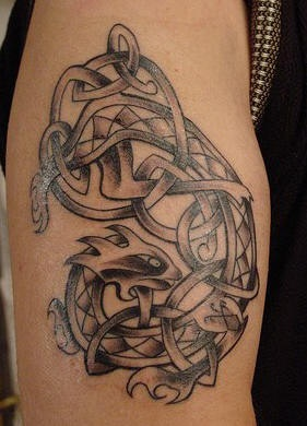 Celtic knotted lion tattoo