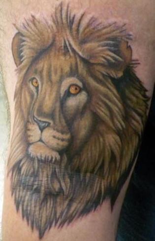 Lion head tattoo in colour