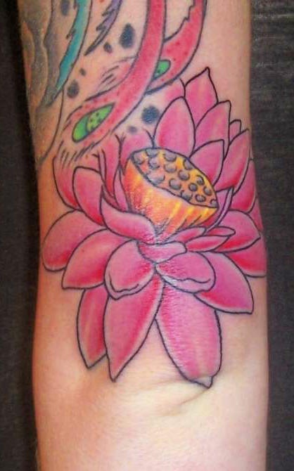 Pink lotus part of tattoo