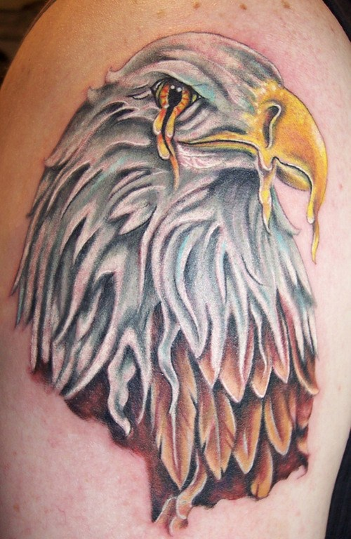 Melting eagle tattoo in colour