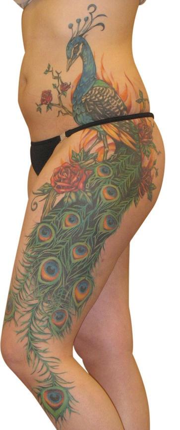 Grande impressionante tatuaggio che inizia dalla pancia e continua sulla gamba: bellissimo pavone colorato