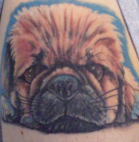 Fluffy puppy dog tattoo