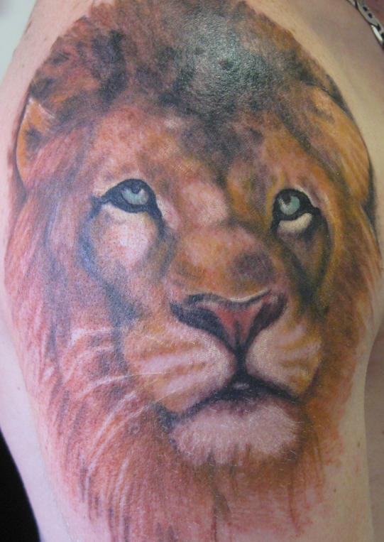 Realistic lion tattoo in colour on shoulder