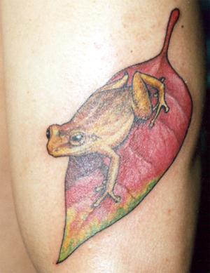 Yellow frog on fallen leaf tattoo