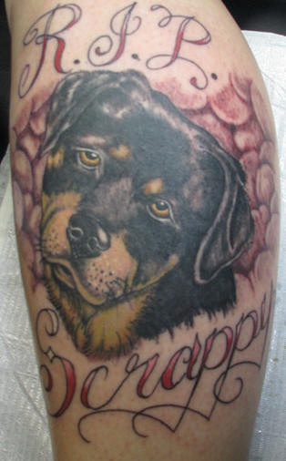 Scrappy rottweiler dog memorial tattoo