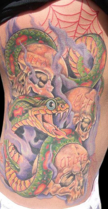 Tatuaggio colorato su tutta schiena il serpente aggressivo & il teschio& la ragnatela