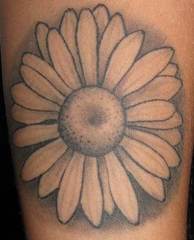 Simple Daisy Black Tattoo Tattooimages Biz