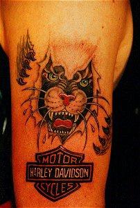 Skin rip panther with harley davidson  tattoo