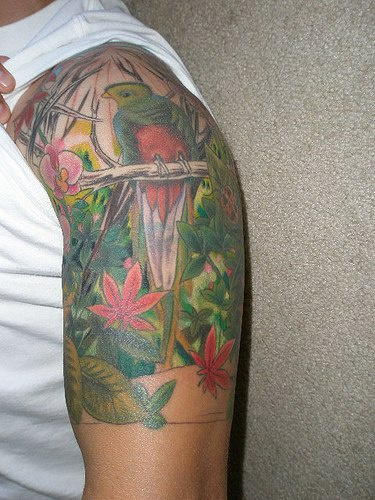 Colourful parrot in jungle tattoo