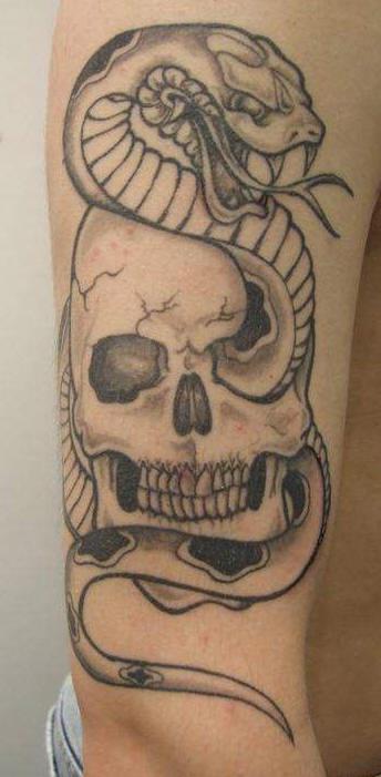 Tatuaggio non colorato classico sul braccio il teschio col serpente