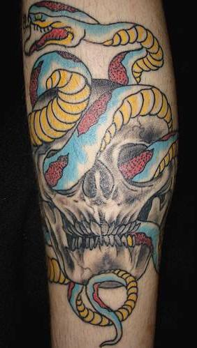 Tatuaggio colorato il teschio e il serpente intorno