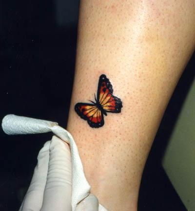 Little regular butterfly tattoo in colour