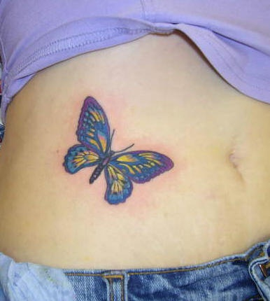 Stomach tattoo, picturesque, dark blue and yellow butterfly