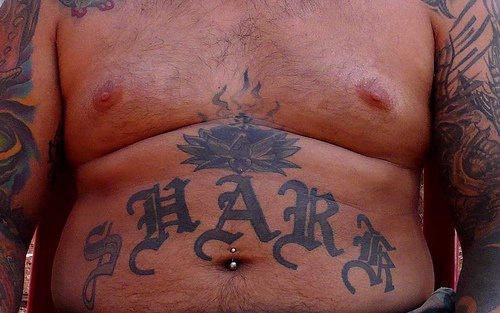 Stomach tattoo,black and white shark, fragrant lotus