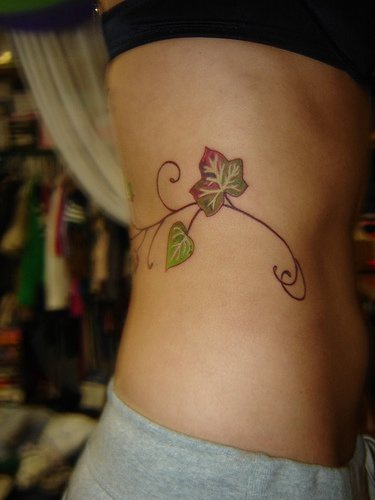Stomach tattoo, little climbing plant, coloured leaves