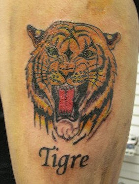 Tiger head with writing tattoo
