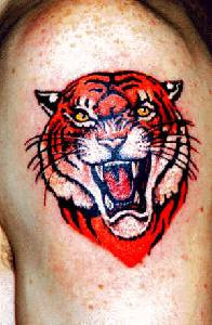 Lush angry tiger tattoo
