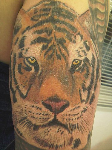 Realistic detailed tiger head tattoo