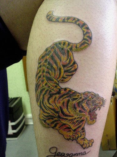 Roaring asian tiger tattoo