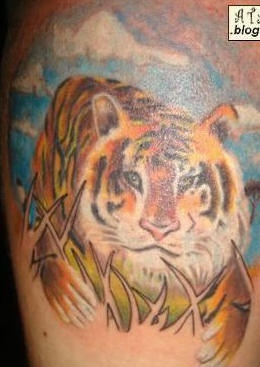 Tiger in nature coloured  tattoo