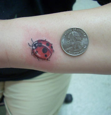 Tiny cute ladybug tattoo