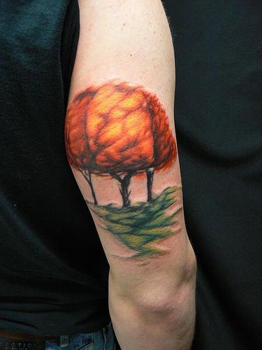 Tatuaggio colorato sul braccio gli alberi