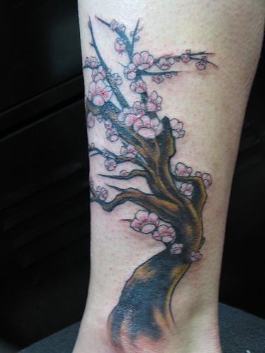 Very nice cherry blossoms tree tattoo