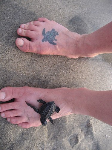 Realistic small turtle tattoo on the foot