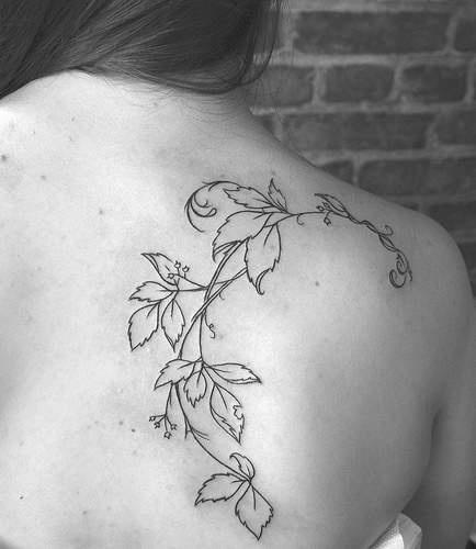 Schöne Reben Tattoo mit Blättern am Schulterblatt