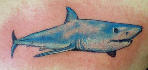 Water animal tattoo with long blue shark