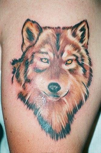 Tattoo with serious red wolf