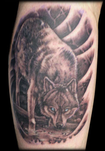 Big wolf is drinking water on tattoo