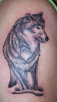 Nice tattoo with pretty wolf
