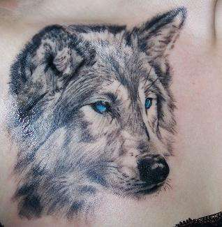 Nice wolf tattoo with blue eyes
