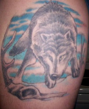 Wolf tattoo with blue sky