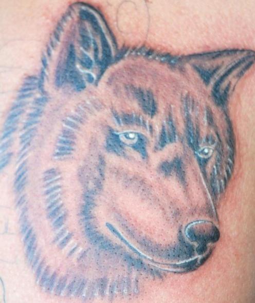 Tatuaggio bello la testa del lupo
