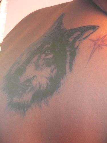 Tattoo with big wolf head and red star