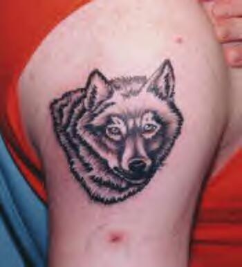 Tatuaggio sul deltoide la testa del lupo