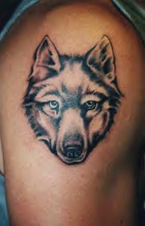 Tatuaggio semplice sul deltoide la testa del lupo