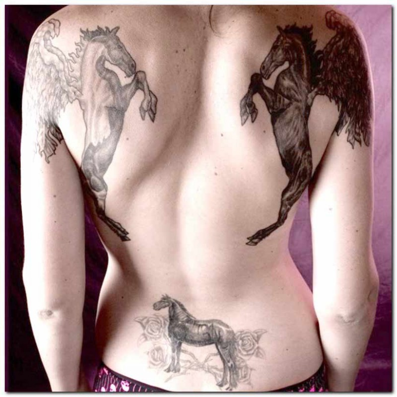 Three horses tattoo on whole back