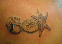 Awesome seashell and starfish tattoo for women on side