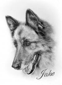 German Shepherd Tattoo Designs Page 2 Tattooimages Biz