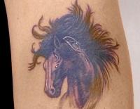 Dark horse head with a lush mane tattoo