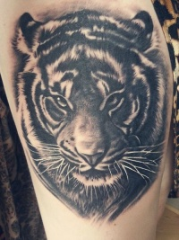 Realistic tiger face tattoo for man
