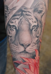 The white tiger tattoo for arm design