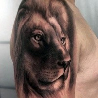 3D amazing painted shoulder tattoo of steady lion