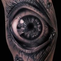 Tatuaggio bellissimo 3D l'occhio & gli insetti