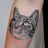 3D lifelike very detailed cat portrait tattoo